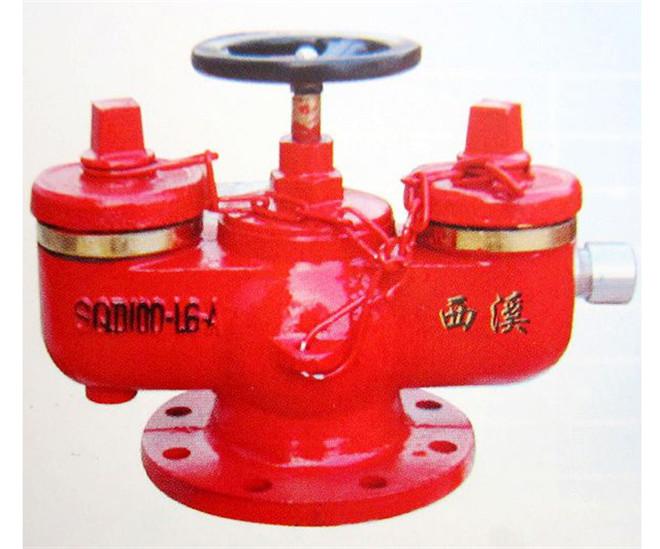 多用式消防水泵接合器1
